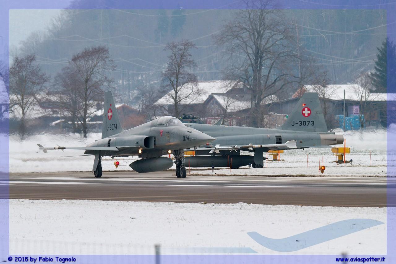 2015-WEF-Meiringen-22-gennaio-051