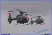 2015-meiringen-axalp-hornet-puma-004
