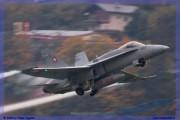 2015-meiringen-axalp-hornet-puma-016