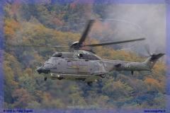 2015-meiringen-axalp-hornet-puma-034