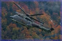 2015-meiringen-axalp-hornet-puma-037