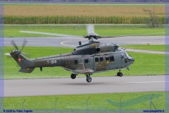 2015-meiringen-axalp-hornet-puma-056