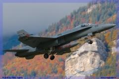 2015-meiringen-axalp-hornet-puma-155