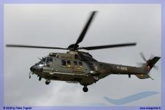 2015-meiringen-axalp-hornet-puma-170