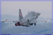 2016-Payerne-WEF-F18-F5-Hornet-Tiger-016