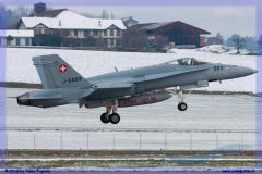 2016-Payerne-WEF-F18-F5-Hornet-Tiger-012