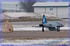2016-Payerne-WEF-F18-F5-Hornet-Tiger-023
