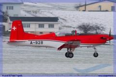 2016-Payerne-WEF-F18-F5-Hornet-Tiger-026
