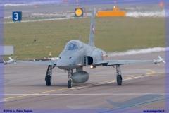 2016-Payerne-WEF-F18-F5-Hornet-Tiger-029