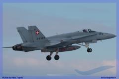 2016-Payerne-WEF-F18-F5-Hornet-Tiger-031