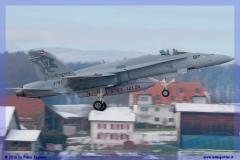 2016-Payerne-WEF-F18-F5-Hornet-Tiger-034