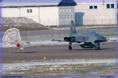 2016-Payerne-WEF-F18-F5-Hornet-Tiger-049