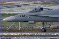 2016-Payerne-WEF-F18-F5-Hornet-Tiger-053