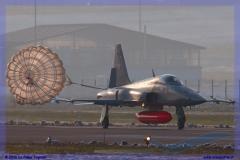 2016-Payerne-WEF-F18-F5-Hornet-Tiger-064