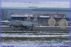 2016-Payerne-WEF-F18-F5-Hornet-Tiger-081