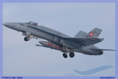 2016-Payerne-WEF-F18-F5-Hornet-Tiger-086