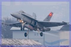 2016-Payerne-WEF-F18-F5-Hornet-Tiger-087