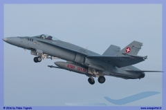 2016-Payerne-WEF-F18-F5-Hornet-Tiger-095