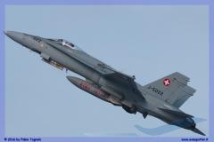2016-Payerne-WEF-F18-F5-Hornet-Tiger-096