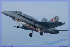 2016-Payerne-WEF-F18-F5-Hornet-Tiger-097