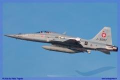 2016-Payerne-WEF-F18-F5-Hornet-Tiger-100