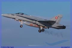 2016-Payerne-WEF-F18-F5-Hornet-Tiger-115