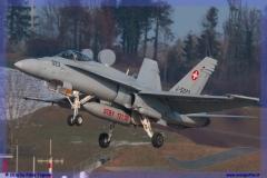 2016-Payerne-WEF-F18-F5-Hornet-Tiger-131