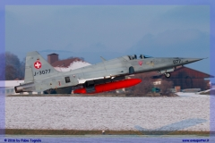 2016-Payerne-WEF-F18-F5-Hornet-Tiger-137