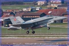 2016-Payerne-WEF-F18-F5-Hornet-Tiger-142