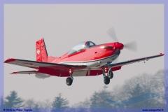 2016-Payerne-WEF-F18-F5-Hornet-Tiger-144