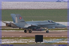 2016-Payerne-WEF-F18-F5-Hornet-Tiger-162
