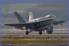 2016-Payerne-WEF-F18-F5-Hornet-Tiger-168