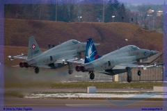 2016-Payerne-WEF-F18-F5-Hornet-Tiger-173
