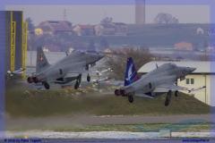 2016-Payerne-WEF-F18-F5-Hornet-Tiger-174