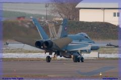 2016-Payerne-WEF-F18-F5-Hornet-Tiger-175