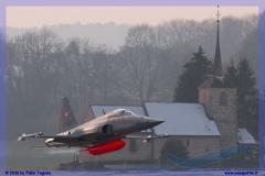 2016-Payerne-WEF-F18-F5-Hornet-Tiger-176