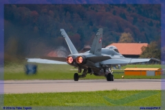 2016-meiringen-f-18-5-hornet-tiger-night-flight-011