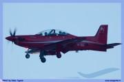 2017-Sion-WEF-F18-F5-Hornet-Tiger_007