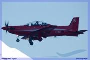 2017-Sion-WEF-F18-F5-Hornet-Tiger_008