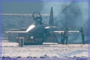 2017-Sion-WEF-F18-F5-Hornet-Tiger_015