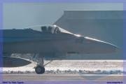 2017-Sion-WEF-F18-F5-Hornet-Tiger_020