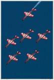 2015-rivolto-55-frecce-tricolori-055