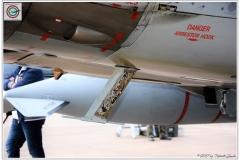 2017-decimomannu-Tornado-RAF-Serpentex-038