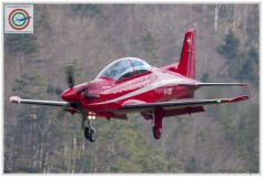 2018-meiringen-wef-f-18-hornet-tiger-120