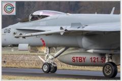 2018-meiringen-wef-f-18-hornet-tiger-011