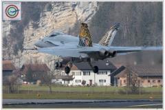2018-meiringen-wef-f-18-hornet-tiger-029