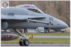2018-meiringen-wef-f-18-hornet-tiger-149