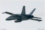 2019-Payerne-Schweizer-Luftwaffe-F18-Hornet_006