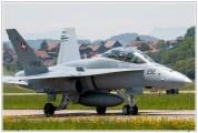 2019-Payerne-Schweizer-Luftwaffe-F18-Hornet_015