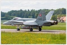 2019-Payerne-Schweizer-Luftwaffe-F18-Hornet_056